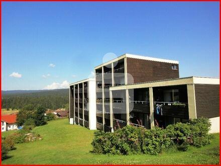 Gemütliches Appartement in 94145 Haidmühle