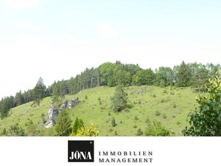 Idyllisches Einfamilienhaus inmitten der fränkischen Schweiz