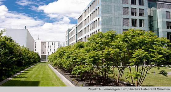 Saule Projekt Außenanlagen Europäisches Patentamt München