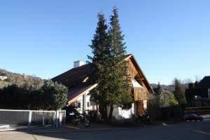 Wohnhaus mit Einliegerwohnung und Blick auf den Ebersberg