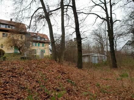 Top-Lage im wunderschönen Weißenborn