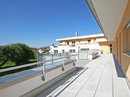 Dachterrassen-Wohntraum
