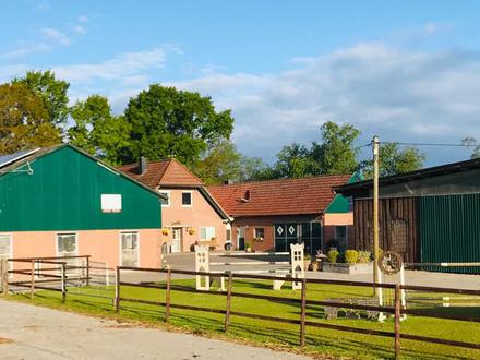Pferdehof mit rd. 6,2 ha Eigenland in Rastede, Zukauf bzw. Zupachtung möglich