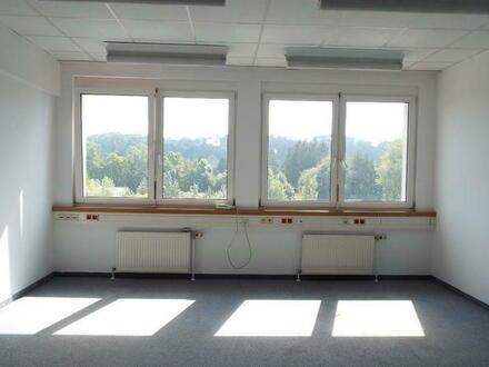 Sonniges 2 Raum Büro im GTZ Wels Top 32b, provisionsfrei