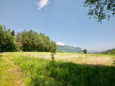 Gallizien (18 Autominuten bis Klagenfurt - Ost / IKEA): ebenes 1.067 m² Grundstück (Bauland-Aufschließungsgebiet)