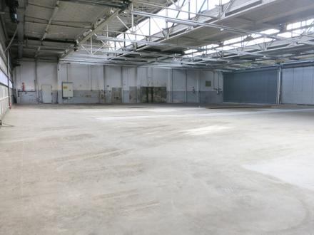 gepflegte Lager- / Produktionshalle in Glauchau