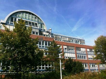 Penthouse mit Dachterrasse im Wissenschaftszentrum am Neckar - Kühlung und Schloßblick inklusive