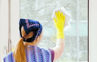 Fenster putzen: Das müssen Mieter tun