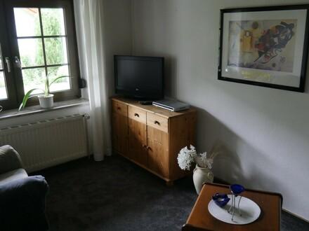 2 Raum Wohnung möbliert in ruhiger Lage zu vermieten