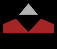 Staudinger GmbH