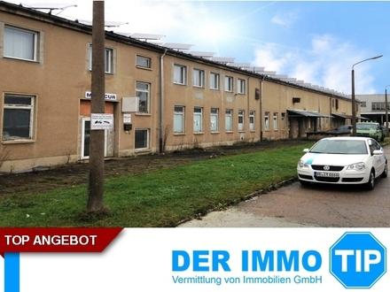 Kalthalle für Produktion oder Lager mit Bürofläche nahe Zwickau zu mieten