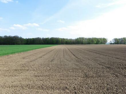 Landwirtschaftliches Objekt in Otzing