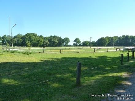 Reiterhof mit Reithalle und 5 ha!