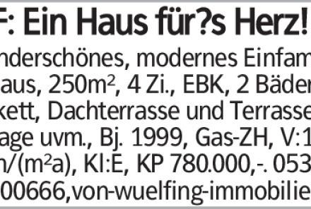 Haus in Wolfenbüttel (38300) 250m²