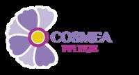 Cosmea Pflege Untersteinach