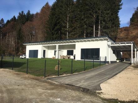 Neuwertige Doppelhaushälfte in sonniger ländlicher Lage mit kleinem Bachlauf am Grundstück
