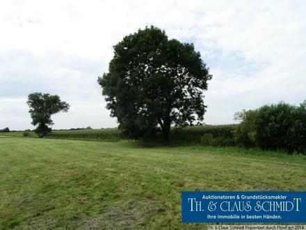 6,6 Hektar Acker- und Grünlandflächen in Oldenbrok, zw. OL und Brake