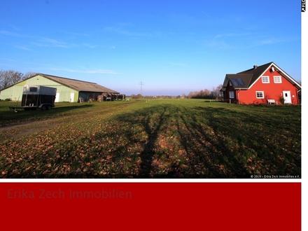 Traumhaft gelegener Pferdehof im Herzen Nordfrieslands in 25821 Dörpum