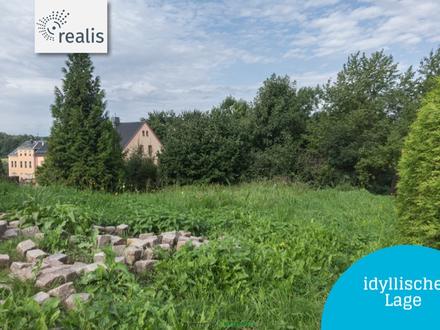 Genau was ich zum Leben brauche+kleines und ruhiges Baugrundstück in Lugau