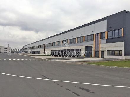 ANMIETUNG ÜBER GREIF & CONTZEN ++ SOFORT VERFÜGBAR ++ Neubau-Logistikzentrum