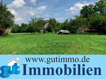 """""""Großzügig wohnen in Backnang!"""" Attraktive DHH in sonniger und ruhiger Lage"""