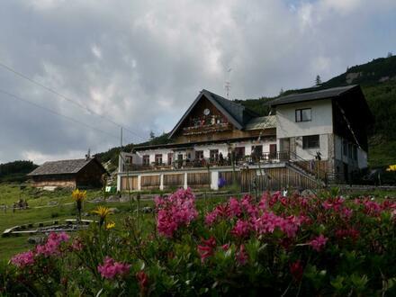 Neuverpachtung Gjaid-Alm, 1.738m - Oberösterreich