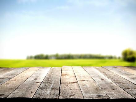 Bauen Sie sich auf einem großzügigen Grundstück Ihr eigenes Heim