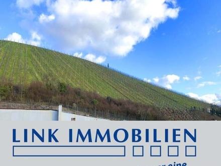 S-Untertürkheim: MFH mit Potential am Fuße der Weinberge***