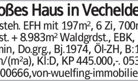 Haus in Peine (38159) 197m²