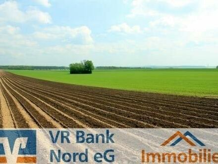 Investieren Sie in eine attraktive Ackerfläche in Nordfriesland