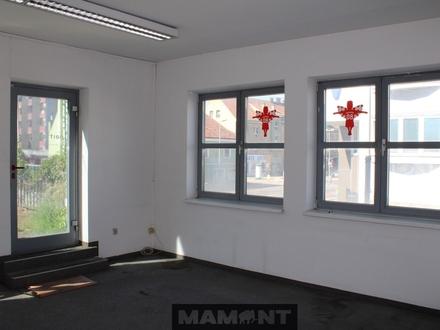 4-Zimmer Wohnung mit 130m2 begrünter Dachterrasse im Zentrum von Schwechat