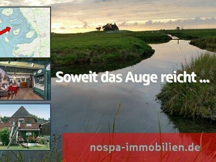 Soweit das Auge reicht: Vielseitig einsetzbare Gewerbe-/und Wohnimmobilie auf Hallig Hooge!