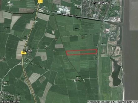 7,7 ha Grünland bei Nordenham