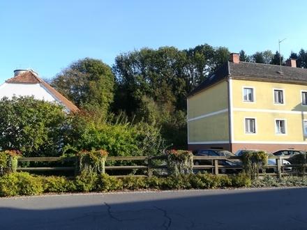Ortszentrum Gossendorf neu sanierte,moderne Garconniere mit Parkplatz