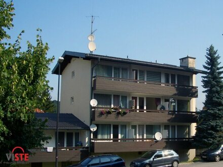 Kuschelige Garconniere mit Balkon und Carport!