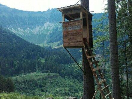 Jagd- und Forstwirtschaften