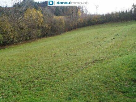 3213 Frankenfels/Pielachtal: Baugrund in landschaftlich schöner Umgebung mit Weitblick