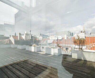 Traumhafte 4-Zimmer DG-Wohnung mit Dachterrasse in 1010 Wien zu vermieten!