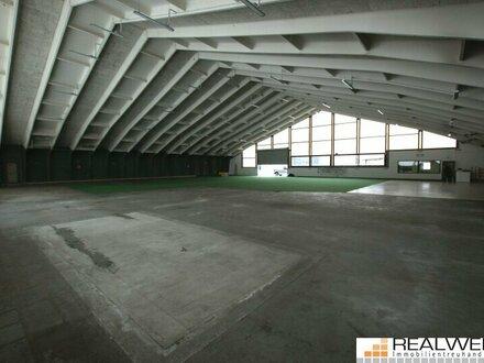 Mehrzweckhalle Salzburg Süd