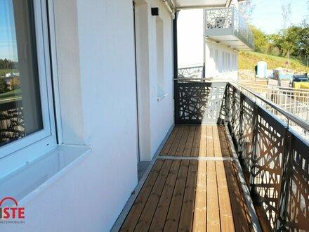 Ideale großzügige Singlewohnung mit Balkon und Terrasse!