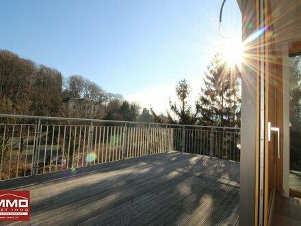 Blick in den Wienerwald von der Terrasse!