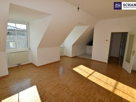 Sonnige Ein-Zimmer Wohnung mit neuer Küche + Ruhelage!