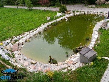 Erholung PUR - Garten-IDYLLE mit eigenem Schwimmteich ...
