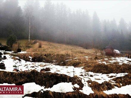 Südhang im 4-Saisonen Kurort Lunz am See