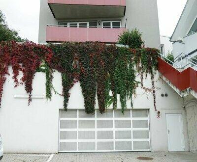 Moderne 2 Zimmerwohnung mit Garten in Kritzendorf