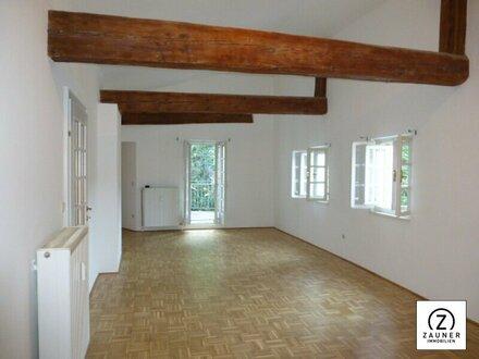 Linzergasse: Ruhige Altbauwohnung mit kleiner Terrasse und Blick auf den Kapuzinerberg