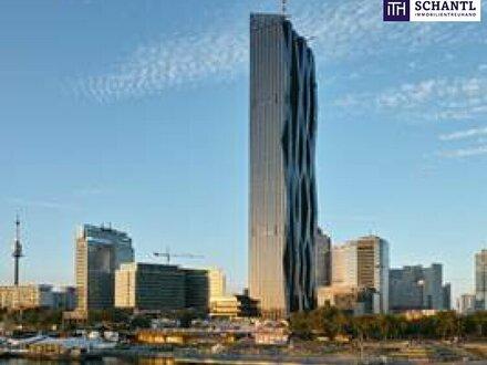 UNO-City Nähe! Modernes, serviciertes und ruhiges Büro ab 12 m² mit perfekter Verkehrsanbindung in 1220 Wien!
