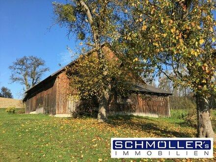 Anwesen in Wels Land - gut geeignet für Wohnen & Arbeiten z.B. Pferdehaltung