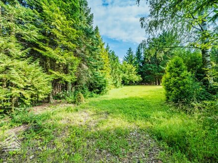 Phänomenales 2.061 m² großes Grundstück an der Grenze zu Penzing