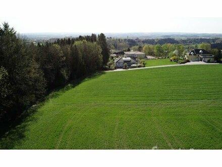 Baugrundstück in Schärding (Brunnenthal)